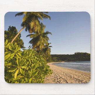 Seychelles, Mahe Island, Anse Takamaka beach, Mouse Pad