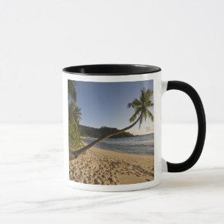 Seychelles, Mahe Island, Anse Takamaka beach, Mug