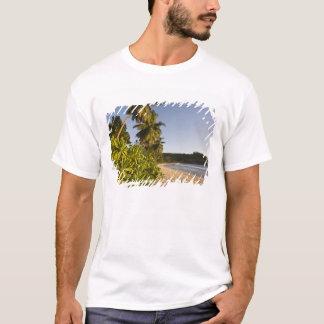 Seychelles, Mahe Island, Anse Takamaka beach, T-Shirt