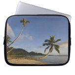 Seychelles, Mahe Island, horizontal palm, Laptop Computer Sleeves