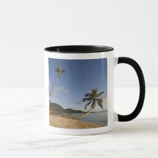 Seychelles, Mahe Island, horizontal palm, Mug