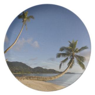 Seychelles, Mahe Island, horizontal palm, Dinner Plates