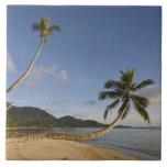 Seychelles, Mahe Island, horizontal palm, Tile