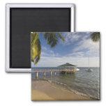 Seychelles, Praslin Island, Anse Bois de Rose, 2 Inch Square Magnet