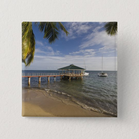 Seychelles, Praslin Island, Anse Bois de Rose, Button