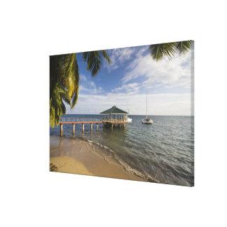 Seychelles, Praslin Island, Anse Bois de Rose, Canvas Print