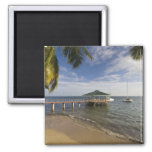 Seychelles, Praslin Island, Anse Bois de Rose, Fridge Magnet