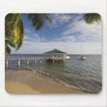 Seychelles, Praslin Island, Anse Bois de Rose, Mousepad