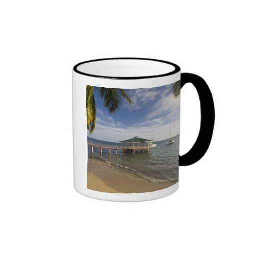 Seychelles, Praslin Island, Anse Bois de Rose, Coffee Mug
