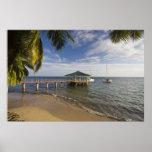 Seychelles, Praslin Island, Anse Bois de Rose, Poster