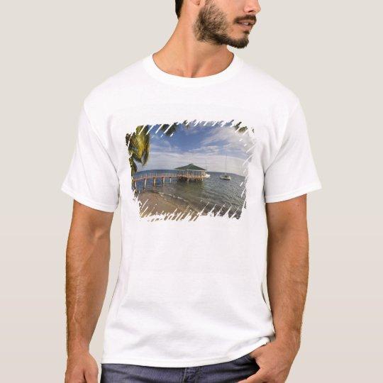 Seychelles, Praslin Island, Anse Bois de Rose, T-Shirt