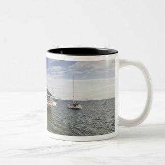 Seychelles, Praslin Island, Anse Bois de Rose, Two-Tone Coffee Mug