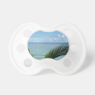 seychells pacifier