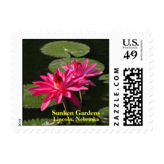 SG 2 Pink Water Lilies postage Stamp  #202 00202