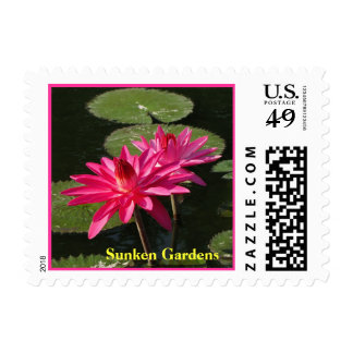 SG 2 Pink Water Lilies postage Stamp  #204 00204