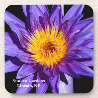 SG Blue Tropical Waterlily 2015 Coaster 1