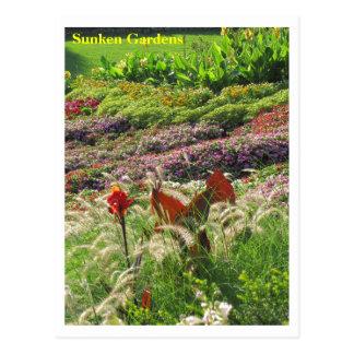 SG Lincoln, NE Postcard #158N  0158
