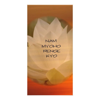 SGI Buddhist Photo Card: Lotus Nam Myoho Renge Kyo Card