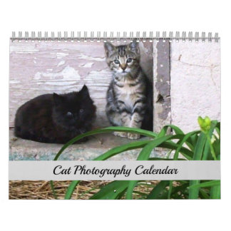 Sgolis Original Cat Photography Calendar
