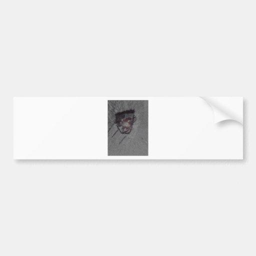 Sgrey matters bumper sticker