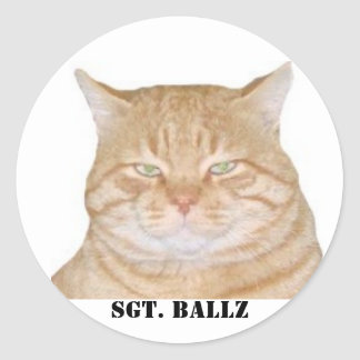 SGT. BALLZ THE CAT STICKER