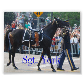 Sgt. York The Riderless Horse Poster