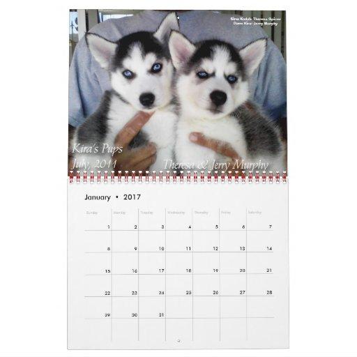 SHAAZ 2012 Calendar