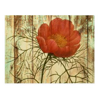 shabby chic barn wood poppy flower postcard