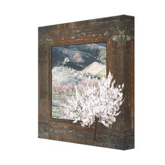 Shabby Chic pink scenic blossom 12x12 canvas print