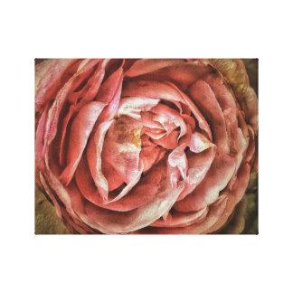 Shabby Chic Romantic Rose Canvas Prints