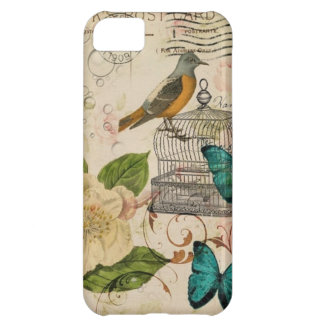 shabby chic rose botanical birdcage french bird cover for iPhone 5C