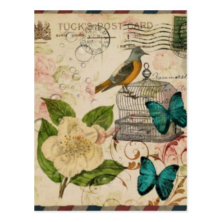 shabby chic rose botanical birdcage french bird postcard