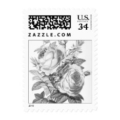 Shabby Chic Vintage Floral Postage at Zazzle