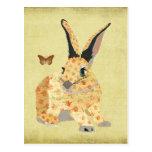 Shabby Floral Bunny  Postcard