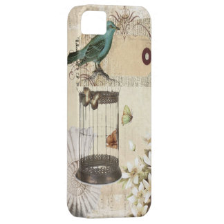 shabbychic Bird  cage collage Vintage Paris iPhone SE/5/5s Case