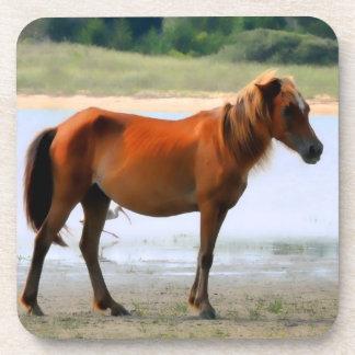 Shackleford Banks Horse Drink Coaster