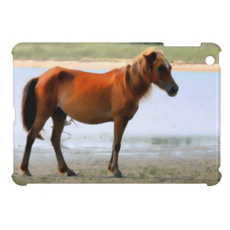 Shackleford deposita el caballo