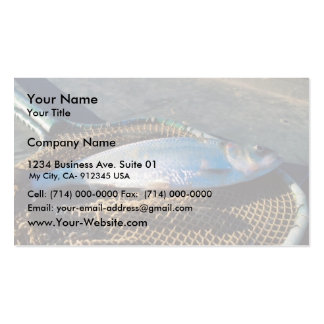 Shad In Net Business Card