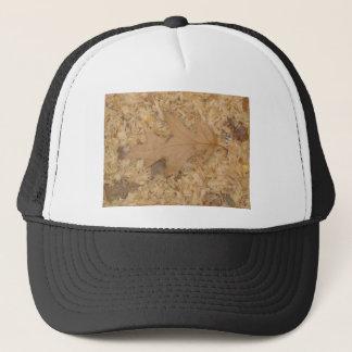 Shade of brown trucker hat