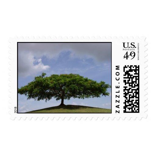shade stamp
