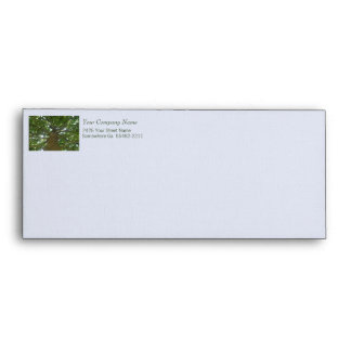 Shade Tree #10 Envelope