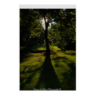 Shade Tree Posters