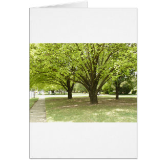 Shade Trees Card
