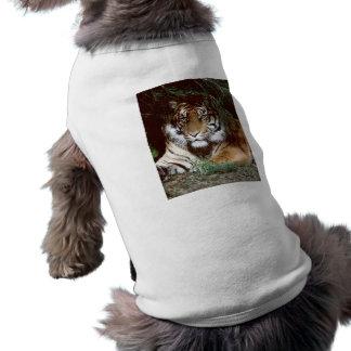 Shaded Tiger Doggie Shirt