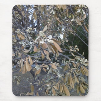 Shades of Autum mouse pad