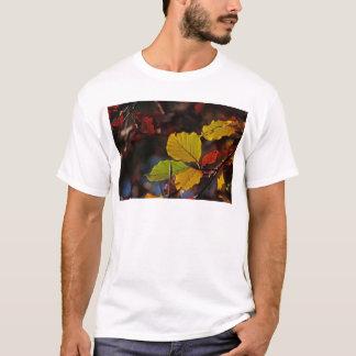 Shades of Autumn (7).jpg T-Shirt