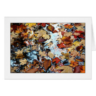 Shades Of Autumn Card