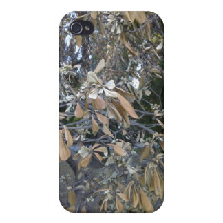 Shades of Autumn II iPhone 4/4S Cases
