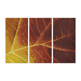 Shades of Autumn Leaf Canvas Print