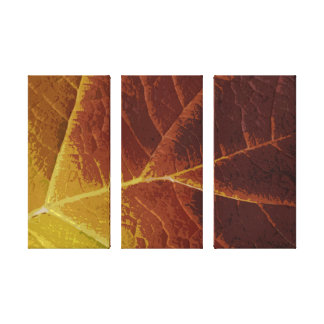 Shades of Autumn Wrapped Canvas Print